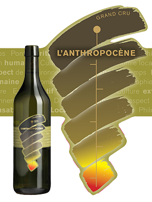 Bio wine from the Lavaux Domaine Piccard
